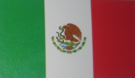 mexico people finder